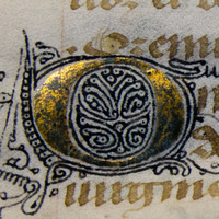 The Hargrett Hours: Exploring Medieval Manuscripts