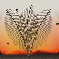 Abstract leaf fronds and flying birds in front of a red sunset or sunrise background. Image by Gerhard G. from Pixabay