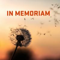 in memoriam text with dandelion