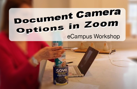 Document Camera Options in Zoom workshop graphic