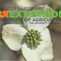 Bradley County Master Gardener