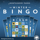 Virtual Winter Bingo