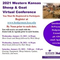 virtual sheep and goat conference