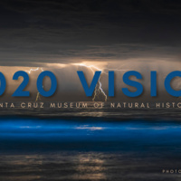2020 Vision: Reflecting on an Unprecedented Year