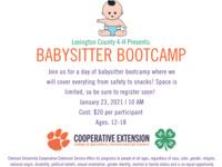 Babysitting Bootcamp