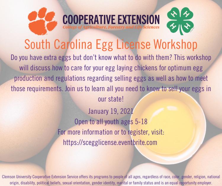 SC Egg License Workshop
