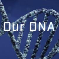 PBS NOVA: Secrets In Our DNA