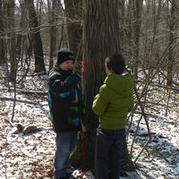 Family Science Outside: Maple Sugaring!