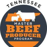 Tennessee Master Beef Producer Program Logo