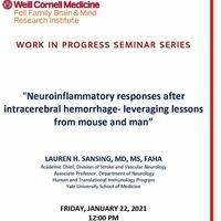 BMRI Work in Progress Seminar Series