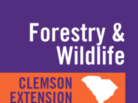 Half and Half Webinar Series: Conservation Easements for Working Forests and Wintertime Invasive Plant Control