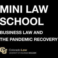 "Virtual Mini Law School: ""Business Law and the Pandemic Recovery"""
