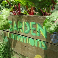 ​Garden Commons Spring Workdays