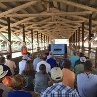 Tobacco, Beef & More Field Day