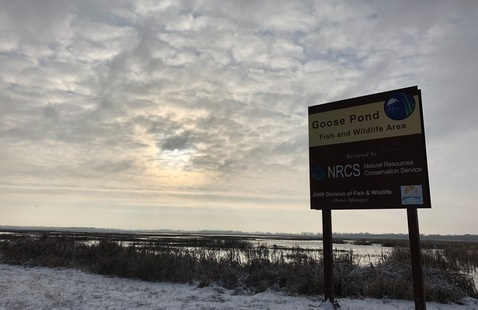 Goose Pond Fish & Wildlife Area sign in front of a snowy wetland-prairie complex
