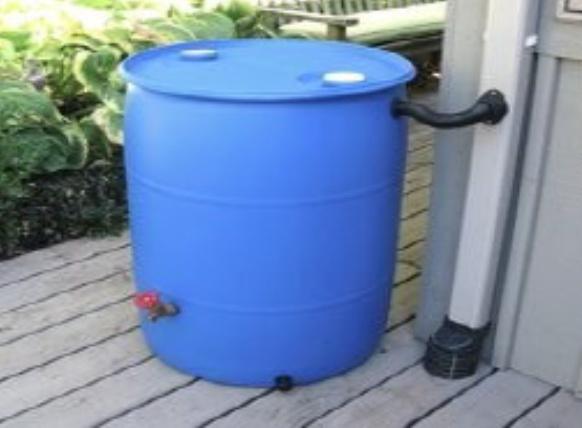 Virtual Build a Rain Barrel Workshop and Contactless Pickup