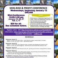 2021 Mini-Risk & Profit Flyer