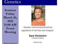 """MBG Friday Seminar: """"Nuclear mechanotransduction: regulation of cell fate and integrity"""""""