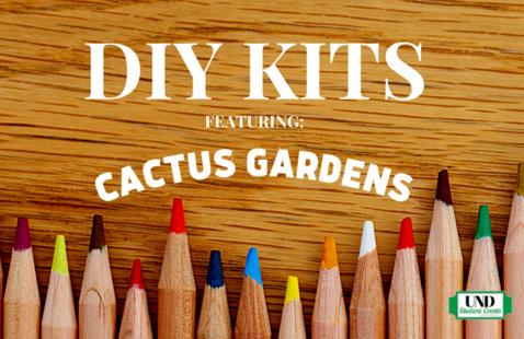 DIY Kits: Cactus Gardens