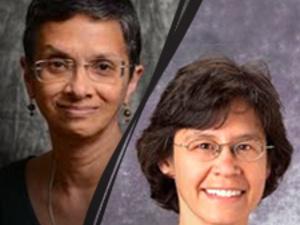 Epi Seminar - Mary Ganguli & Beth Snitz