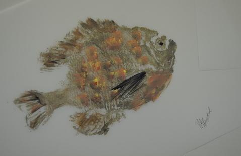 example of fish print