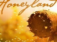 Event image for Virtual Film Seres and Panel Discussion: Honeyland