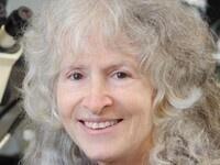 Seminars in Infection & Immunity: Dr. Ellen Rothenberg