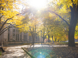 cathedral in fall