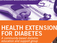 Health Extension for Diabetes Online