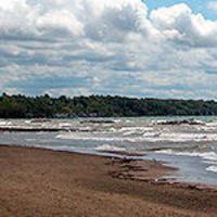 Virtual Beach Ecology