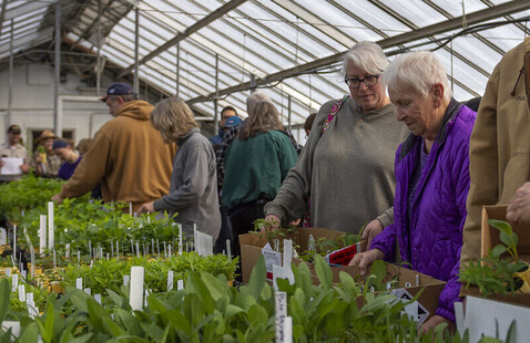 Guests shop the Native Plant Sale, 2019, Photo by The Reeds