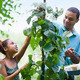 Ask a Master Gardener: Q&A Session