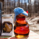 Maple Sugaring Sales