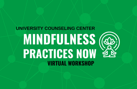 Mindfulness Practices Now Workshop