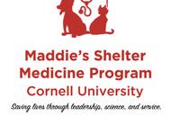CornellVetCARES Community Cat Spay/Neuter Clinic