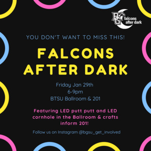 Falcons After Dark