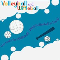Volleyball and Wiffleball