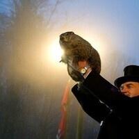 ALPHA PHI OMEGA - RECRUITMENT FELLOWSHIP: Groundhog Day Meet 'n' Greet