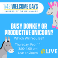 Busy Donkey or Productive Unicorn: Which Will You Be?