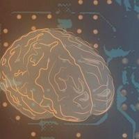 Cognitive Science Alumni Panel | Interdisciplinary Programs