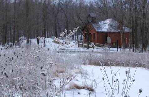 winter scene. Photo by H. DeLorenzo.