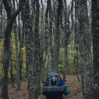 backpacker in the woods