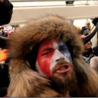 Inside the U.S. Capitol Riot, Flier