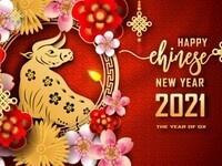 Chinese Club's Virtual Lunar New Year Celebration