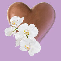 Valentine's Auction and Raffle