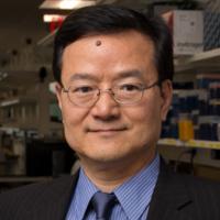 BME Weekly Seminar: Frontiers of Bioengineering - Bin He, PhD