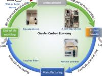 Circular Carbon Economy