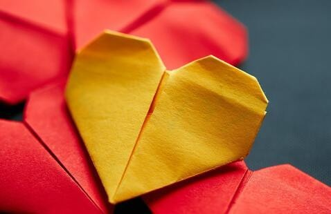 Fold and Chat With the Origami Club