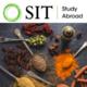 SIT Study Abroad: Jordan - Cooking Class