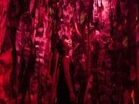 Sara Jimenez: Invisible Narratives